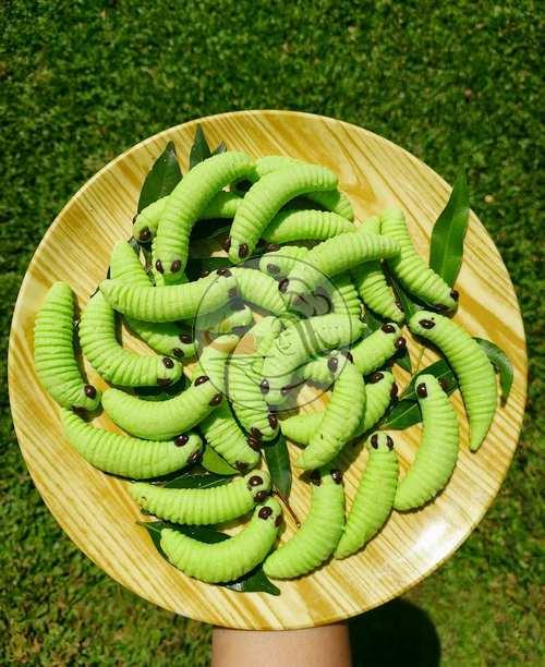 Resep Caterpillar Cookies 2